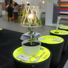 Green Lamp by Siesta